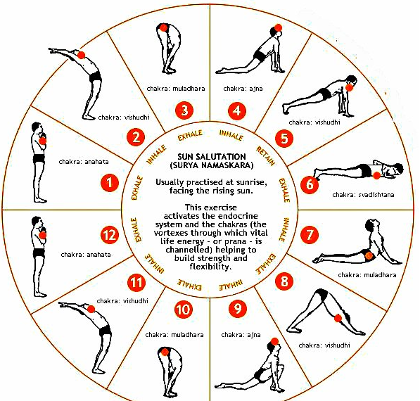 The Chakras and the Sun Salutation