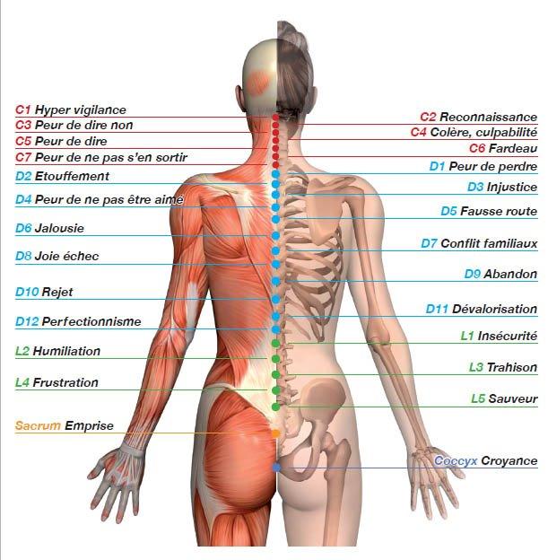 Émotions cristallisées sur colonne vertébrale
