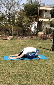 Balasana : une posture de yoga pour soulager les maux de dos